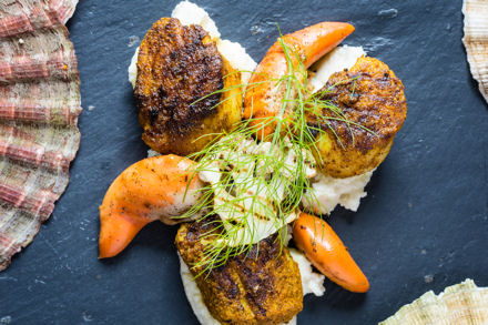 Puree with scallops_blg.jpg