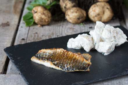 grilled-herring-with-potato-salad_blg.jpg
